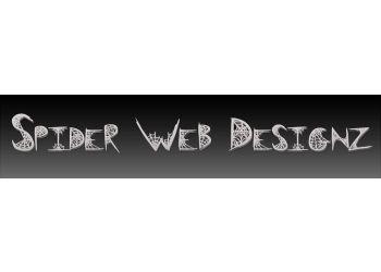 Spider Web Designz