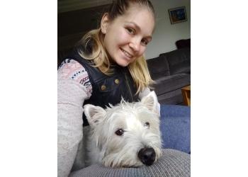 Spirit Pet Care & Dog Walking