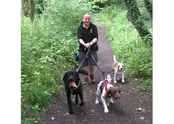 Springfield Dog Walker and Pet Services