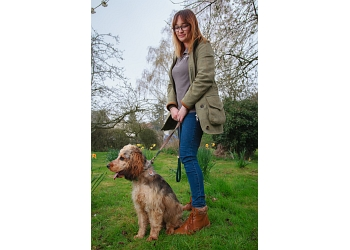 St Albans Dog Training & Services