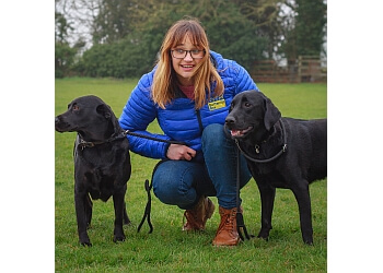 St Albans Dog Training and Services