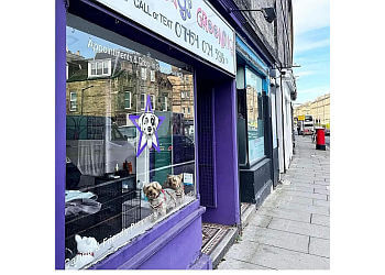 Star Dogs Grooming Salon