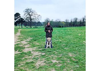 Starbarks Dog Training