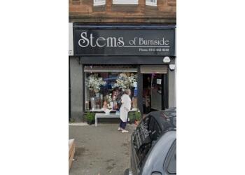 Stems of Burnside