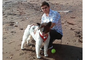 Swindon Dog Walking Services