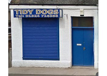 TIdy Dogs
