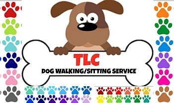TLC dog walking and pet sitting services
