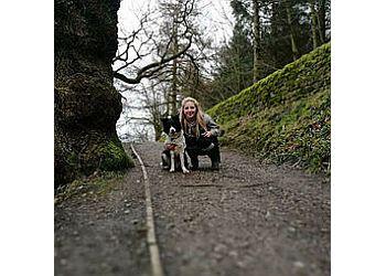 Tails 'n' Trails dog walking