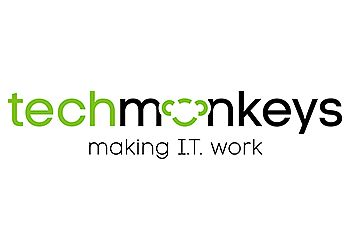 Techmonkeys Limited