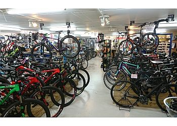 The Bike Cellar