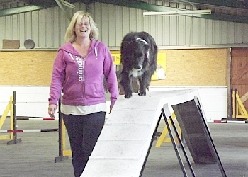 The Covert Canine Centre