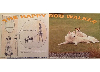 The Happy Dog Walker