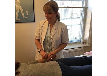 The Little Acupuncture Clinic