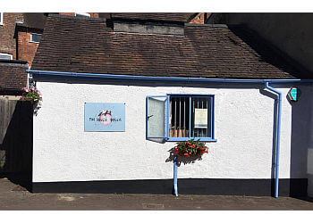 The Soggie Doggie