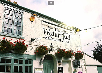 The Water Rat
