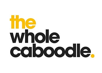 The Whole Caboodle Agency LLP