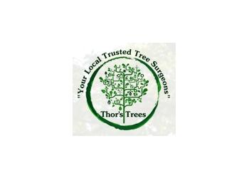 Thor's Trees