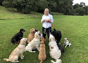 Top Dog Training School & Home Boarding Ltd