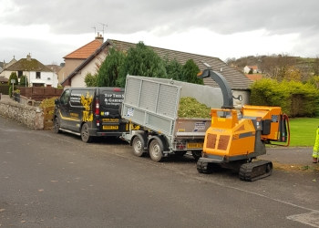 Top Tree Services and Gardening Ltd