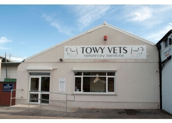 Towy Vets Veterinary Services