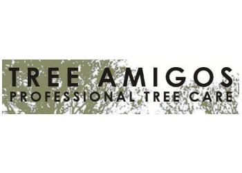 Tree Amigos Limited