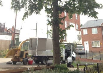Urban Tree Care Ltd