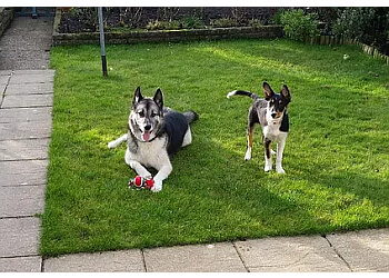 Verity's Pet Services