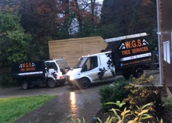 WGS KINDLING & TREE SERVICES