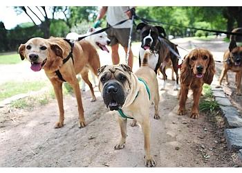 Walk and Woof Aberdeen - Dog Walker / Pet Services