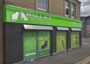 Wallace Veterinary Centre