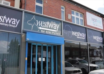 Westway Veterinary Group