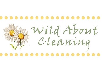 Wild About Cleaning