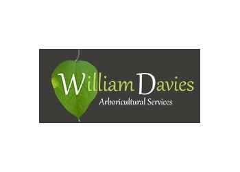 William Davies Arboricultural Services