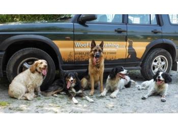 Woof Dog Training Worthing