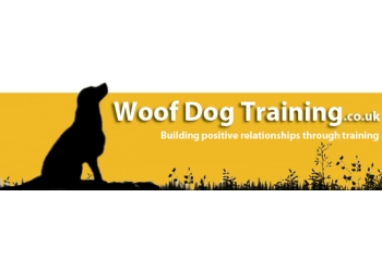 Top Trainers For Dog Training For Anxiety