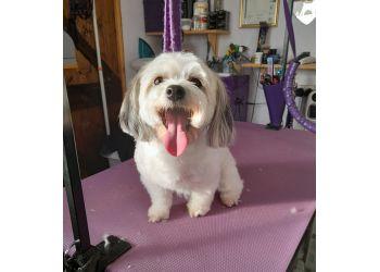 Wuffians Dog Grooming