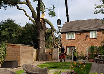 Yorkshire Tree Surgeons Ltd
