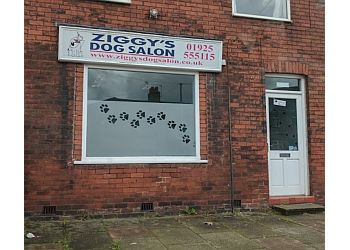 ZIGGY'S DOG SALON