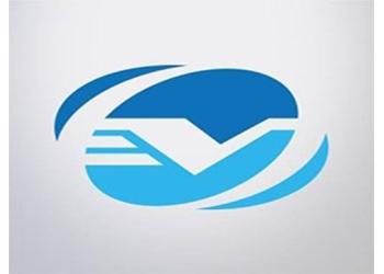 vServices Ltd.